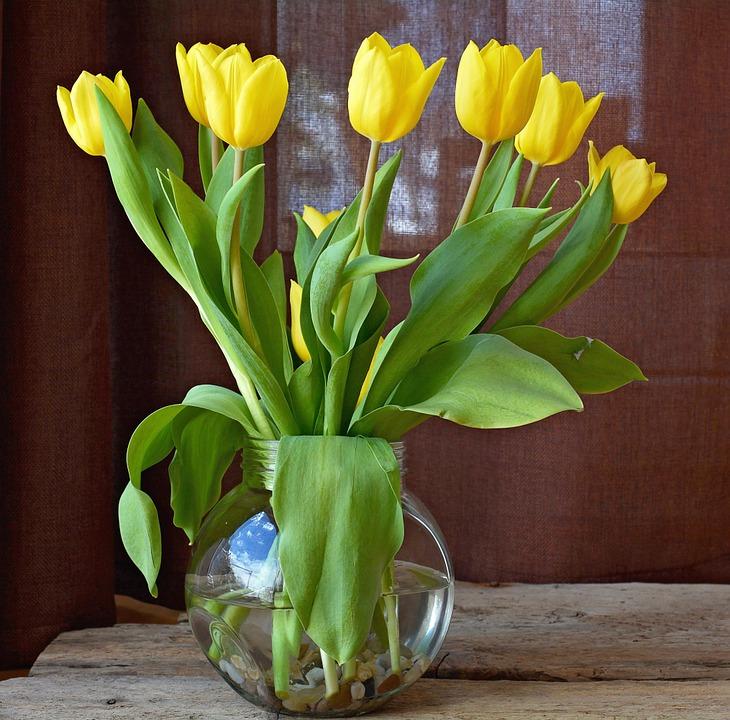 świeże kwiaty w wazonie